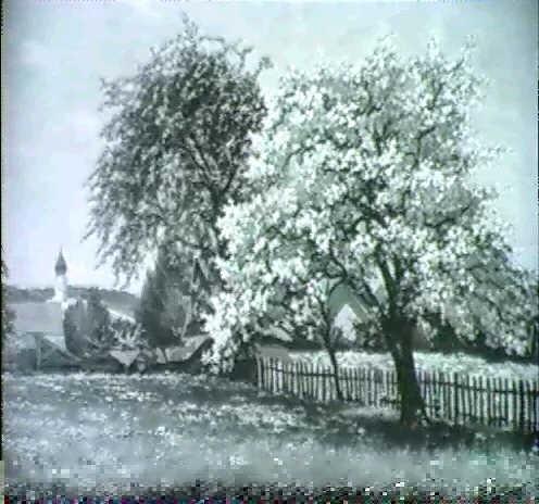 fruhlingslandschaft mit grossem bluhendem obstbaum by ludwig koch hanau