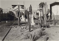 phoenix, arizona by lee friedlander