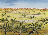 outback landscape by henri bastin