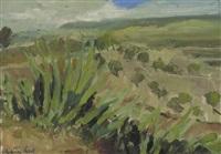 morocan landscape by henry robertson craig