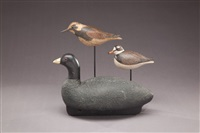 shorebirds (3 works) by david ward