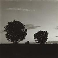 summer nights- 3 by robert adams