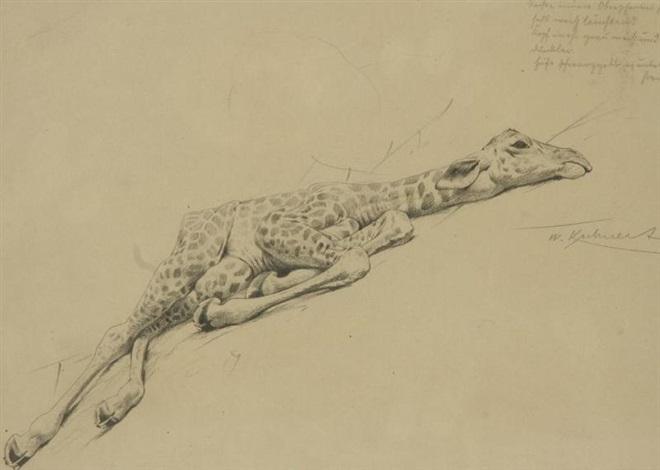 girafon by wilhelm friedrich kuhnert