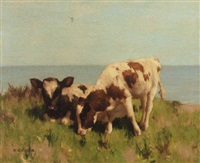 the shore pasture by david gould