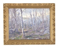 forest landscape by hal robinson
