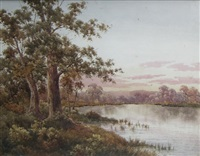 wetlands by neville william cayley