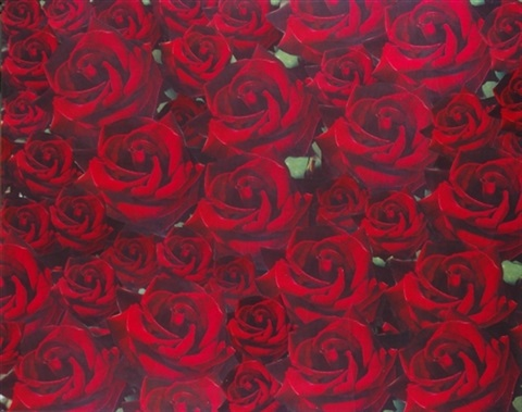 untitled red roses by peter dayton