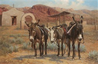 border burros by wayne baize