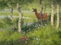 flora and fauna by ralph oberg