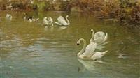 schwäne im giardino del lago, villa borghese, rom by rafael senet y perez
