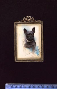 "a french bulldog called ""peter"", owned by king edward vii by gertrude massey"