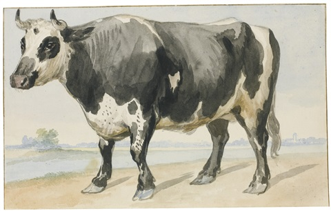 farmyard animals and birds including a pair of bantam hens a friesian bull and a crow 5 works by aert schouman