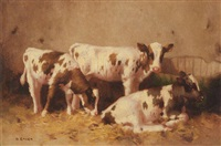 calves resting in a barn by david gould