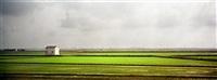 campos de arroz iii by eduardo nave