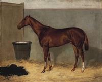 testör - a barna ló by franz reichmann