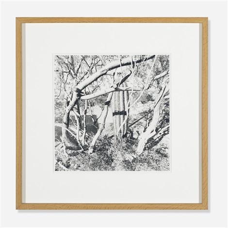 sonora arizona by lee friedlander