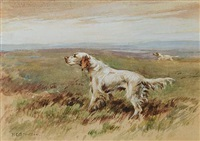 english setter by philip eustace stretton