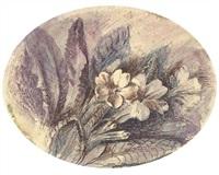 study of primroses by john ruskin