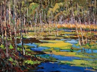 beaver swamp, gatineau park by bruce heggtveit