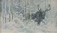 bull moose and snow by robert mclellan bateman