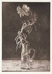 tiger lily in glass vase (+ 2 others, irgr; 3 works) by lou spitalnick