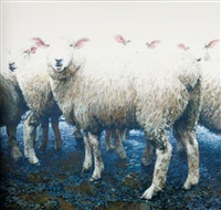 sheep by barry ross smith