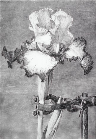 iris ii by william kentridge