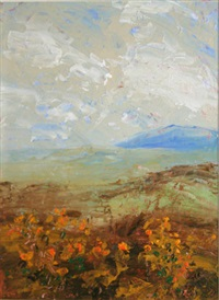 headland & shoreline with gorse - mayo by harry reid