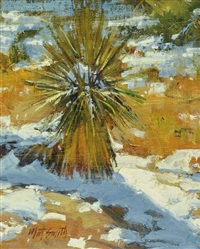 yuccas in snow by matt smith