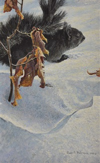 black squirrel by robert mclellan bateman