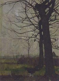baumstudie by hans müller-schnuttenbach