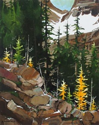 opabin colour (larch trees in their splendor in yoho national park) by allan dunfield