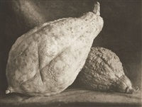two large gourds (+ two large pumpkins, irgr; 2 works) by lou spitalnick