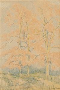 eucalyptus landscape by maurice braun