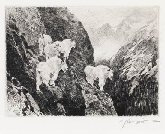 goats by carl clemens moritz rungius