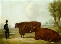 a landowner and two cows in a field by william henry davis