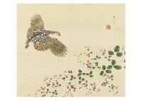 japanese quail by koyo ishizaki
