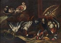 nature morte aux oiseaux by jacob van der kerckhoven