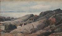kustlandskap med klippor by knut janson