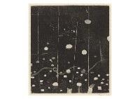 spectrum of piquet by tetsuo komai