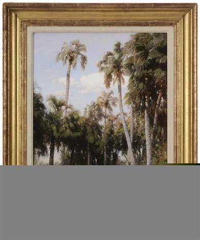 florida palms the everglades by hermann herzog