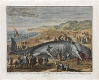 stranding van een walrisch van 70 voeten lang (after jacob matham) by bernard picart