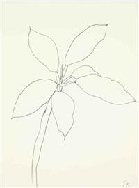 tropical plant, st. martin by ellsworth kelly