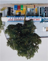 main street tree by rodney graham