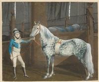 der reitknecht bayer mit einem apfelschimmel in der reitschule zu wallerstein by albrecht adam