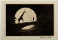 the giraffe on the bridge by thomas herbrich