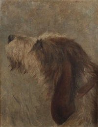 sketch of an otterhound by frances c. fairman