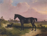 a dark bay pony with a terrier in a landscape by edward walter webb