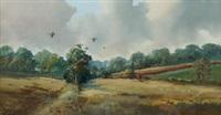 pheasants, greyabbey co. down by r. b. higgins