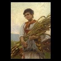 the harvest by vittorio tessari